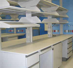 Medical Laboratories